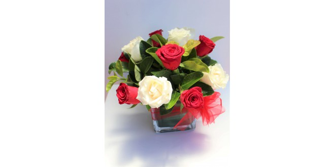 12 Red and White Premium Roses Bouquet with Vase