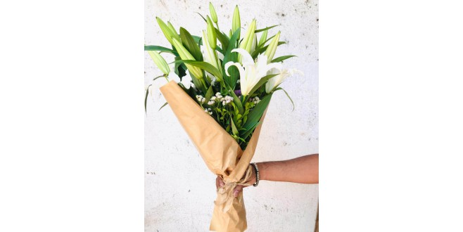 White Beauty - White Oriental Lily