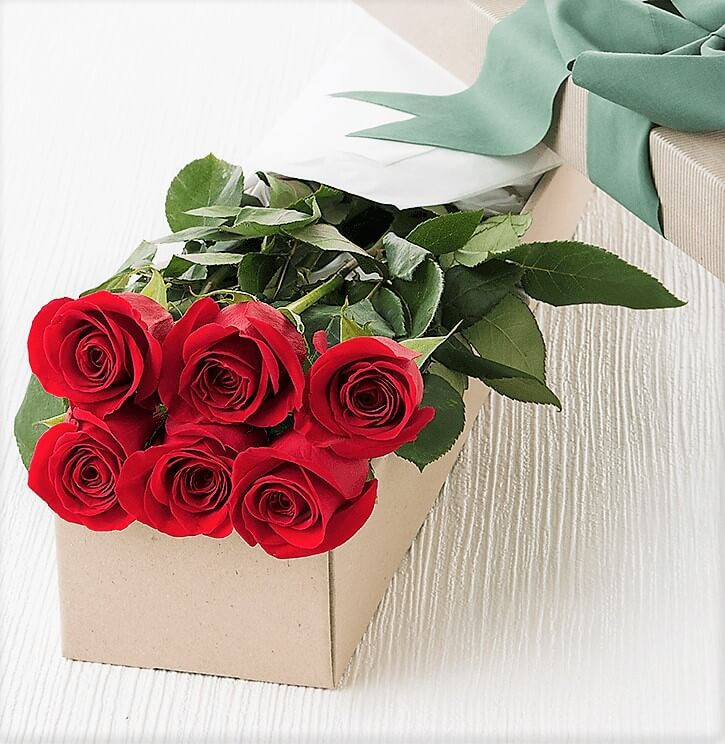Valentine's Day 6 Red Rose in a Box