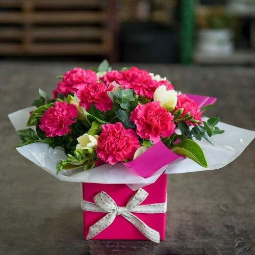 25 Pink Carnation Box Bouquet