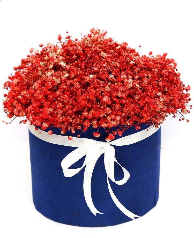 Red Gypso Box Bouquet