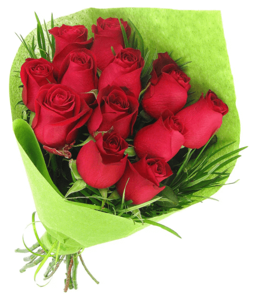Beautiful Blooms - Red Roses