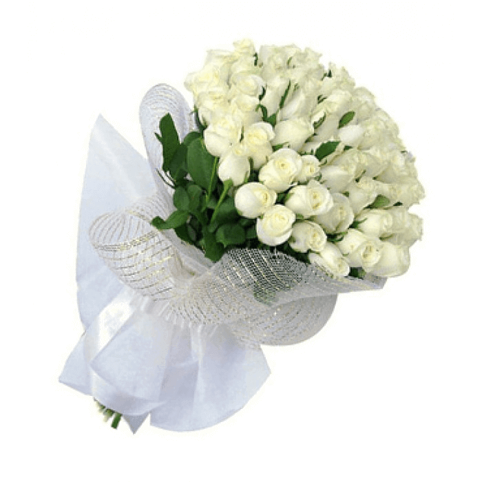 White Snow-Friendship Day Special