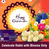 Unique Rakhi Gift Ideas for Your Sister