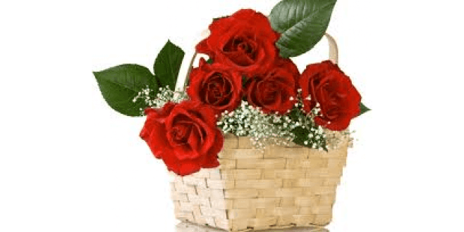 Lovely Rose Basket