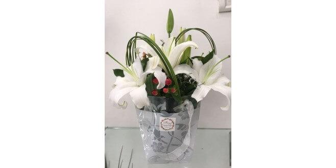 Luxurious Lillies arrangement