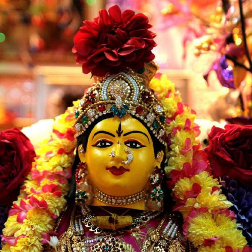 Do you know about Nine flowers of Navratri?