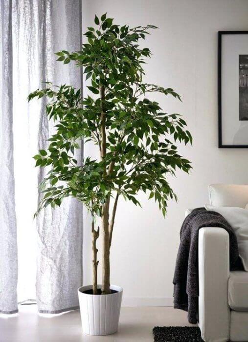 artificial indoor plants